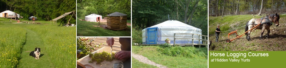 Yurt holidays in England and Wales