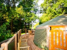 Yurt 1 exterior dappled light glamping woodland