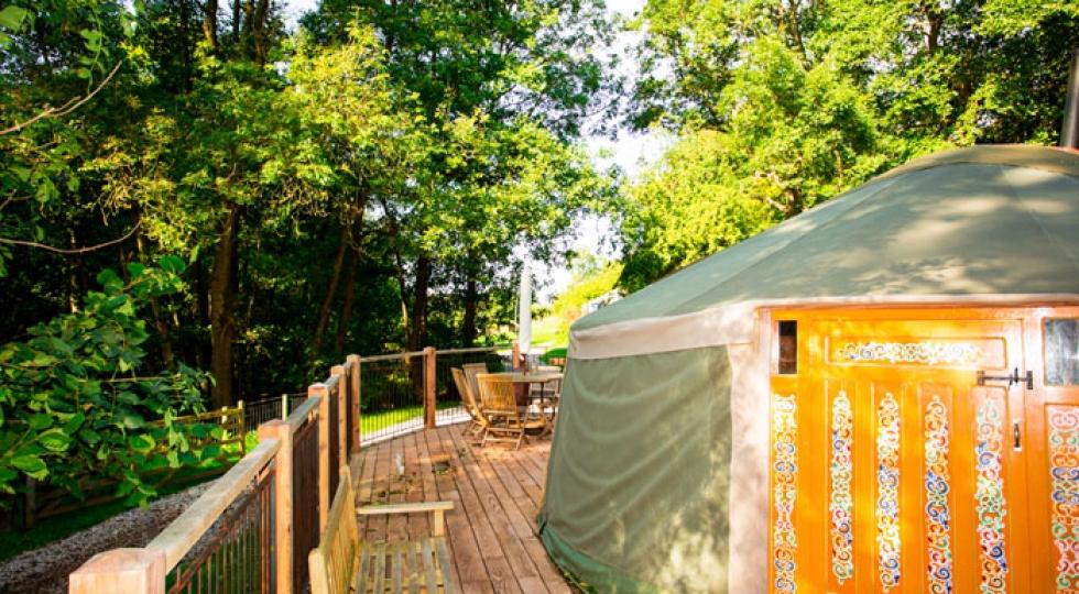 Yurt 1 exterior dappled light glamping woodland