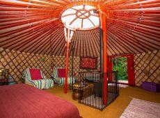Yurt 5 interior