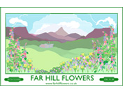 Far Hill Flowers